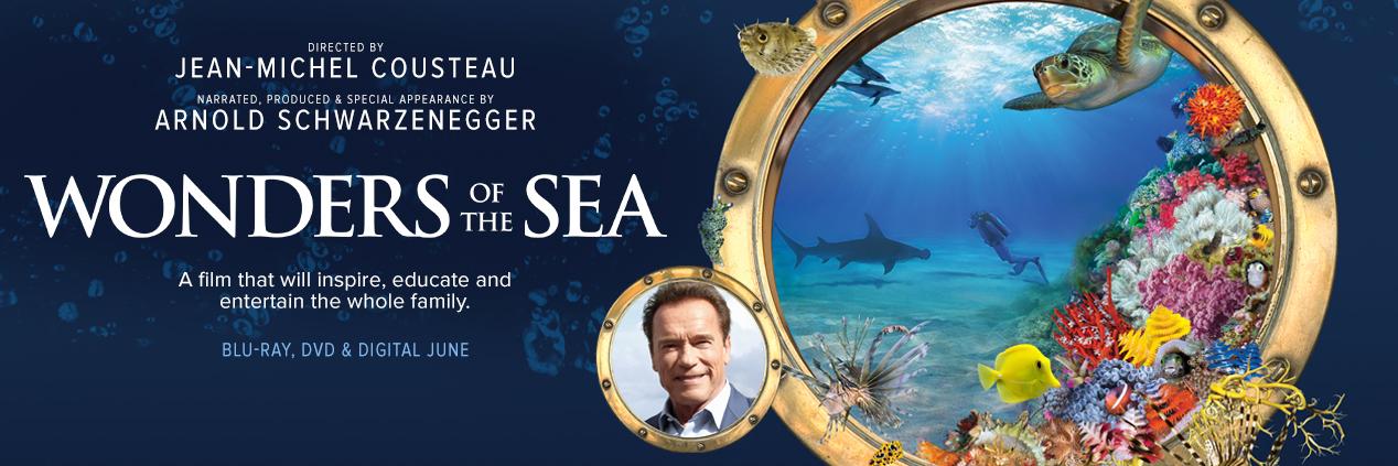 Wonders of the Sea 1268x423